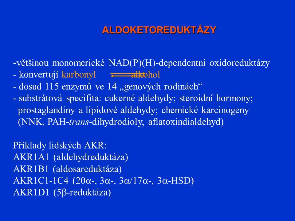 """ALDOKETOREDUKTÁZY -většinou monomerické NAD(P)(H)-dependentní oxidoreduktázy - konvertují karbonylalkohol - dosud 115 enzymů ve 14 """"genových rodinách"""""""