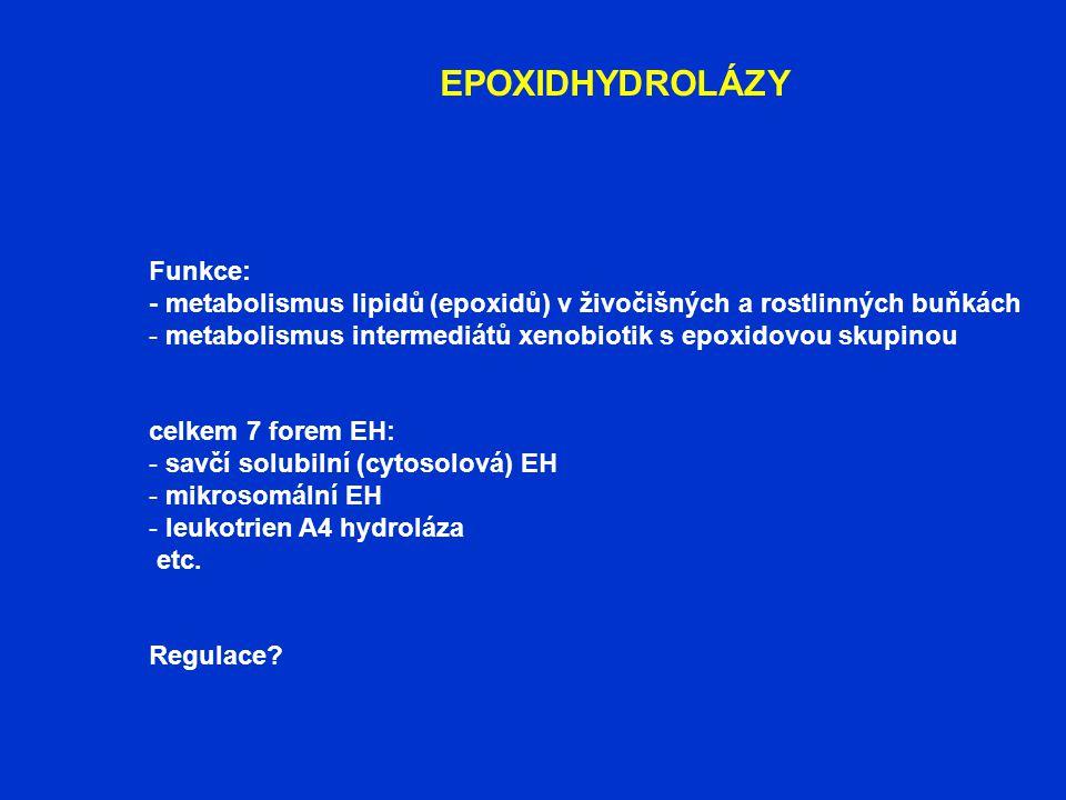 EPOXIDHYDROLÁZY Funkce: - metabolismus lipidů (epoxidů) v živočišných a rostlinných buňkách - metabolismus intermediátů xenobiotik s epoxidovou skupin