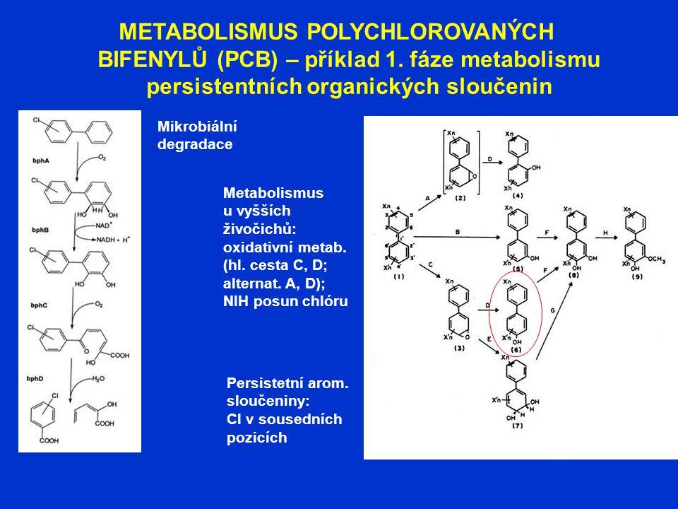 METABOLISMUS POLYCHLOROVANÝCH BIFENYLŮ (PCB) – příklad 1. fáze metabolismu persistentních organických sloučenin Mikrobiální degradace Metabolismus u v