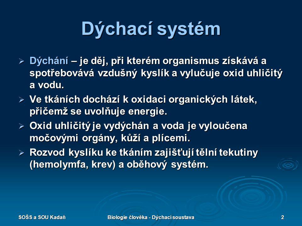 SOŠS a SOU KadaňBiologie člověka - Dýchací soustava2 Dýchací systém  Dýchání – je děj, při kterém organismus získává a spotřebovává vzdušný kyslík a