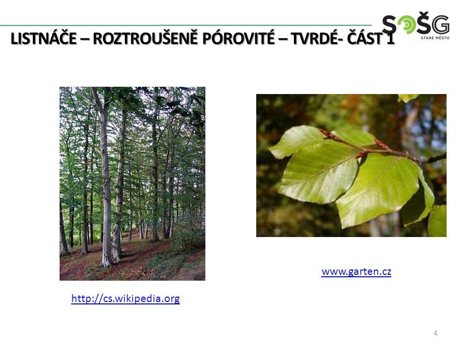 LISTNÁČE – ROZTROUŠENĚ PÓROVITÉ – TVRDÉ- ČÁST 1 4 http://cs.wikipedia.org www.garten.cz