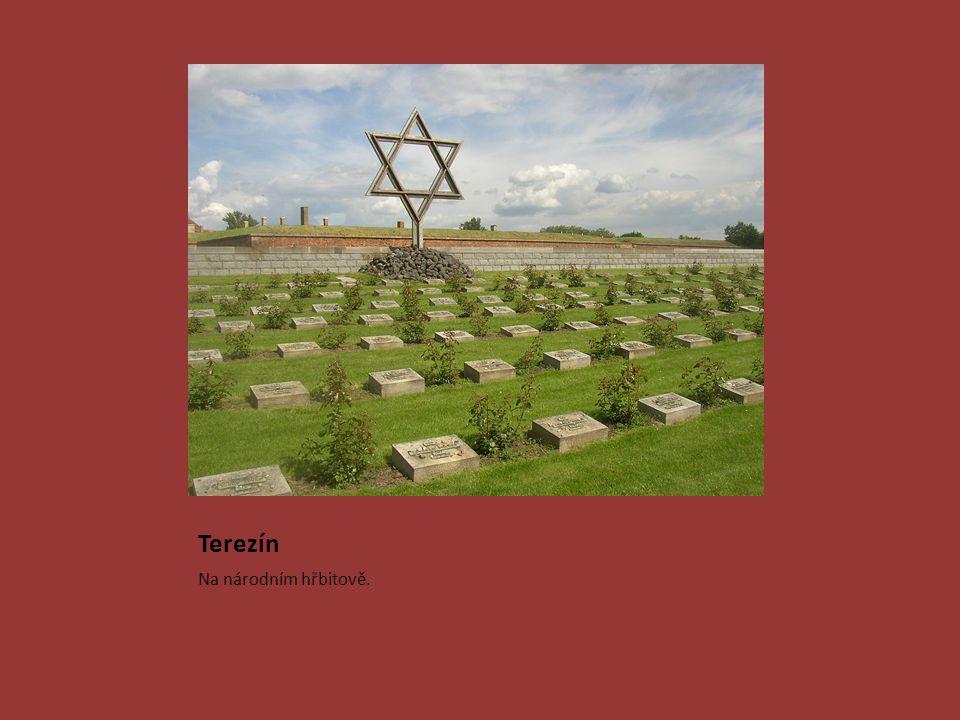 Terezín Na národním hřbitově.
