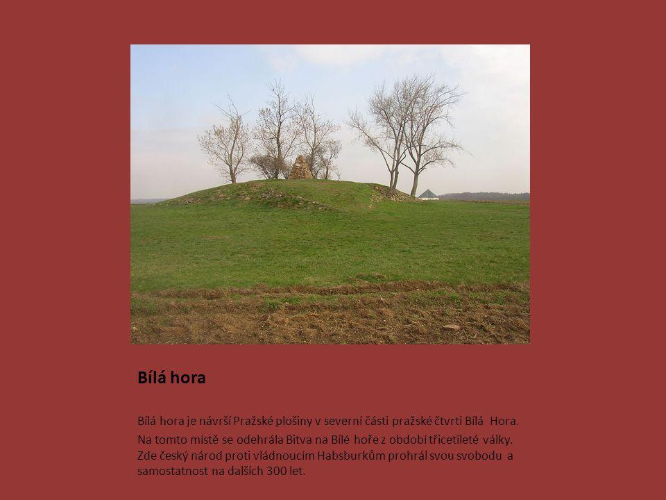 Bílá hora Bílá hora je návrší Pražské plošiny v severní části pražské čtvrti Bílá Hora. Na tomto místě se odehrála Bitva na Bílé hoře z období třiceti