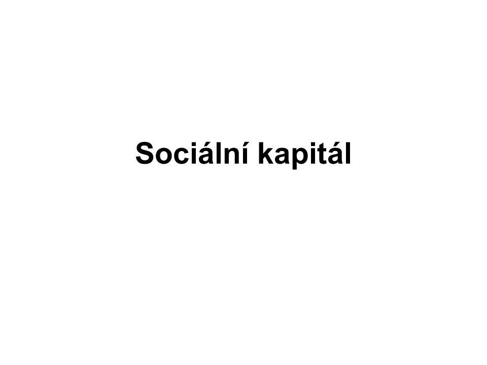 Sociální kapitál