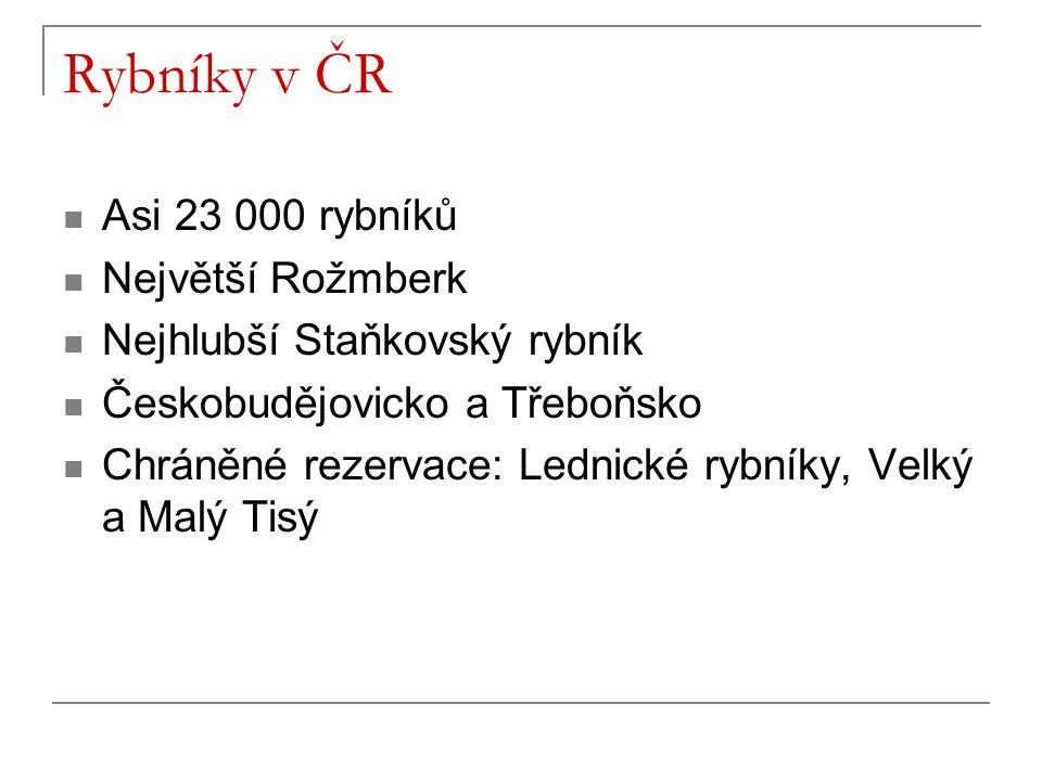 Rybníky v ČR Asi 23 000 rybníků Největší Rožmberk Nejhlubší Staňkovský rybník Českobudějovicko a Třeboňsko Chráněné rezervace: Lednické rybníky, Velký a Malý Tisý
