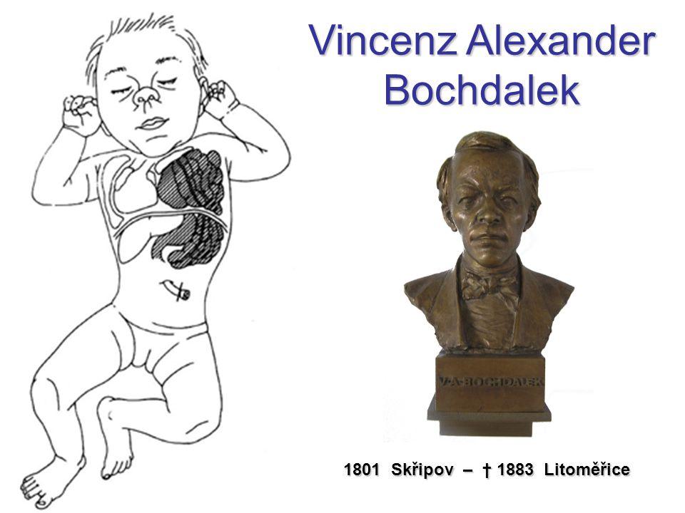1801 Skřipov – † 1883 Litoměřice Vincenz Alexander Bochdalek
