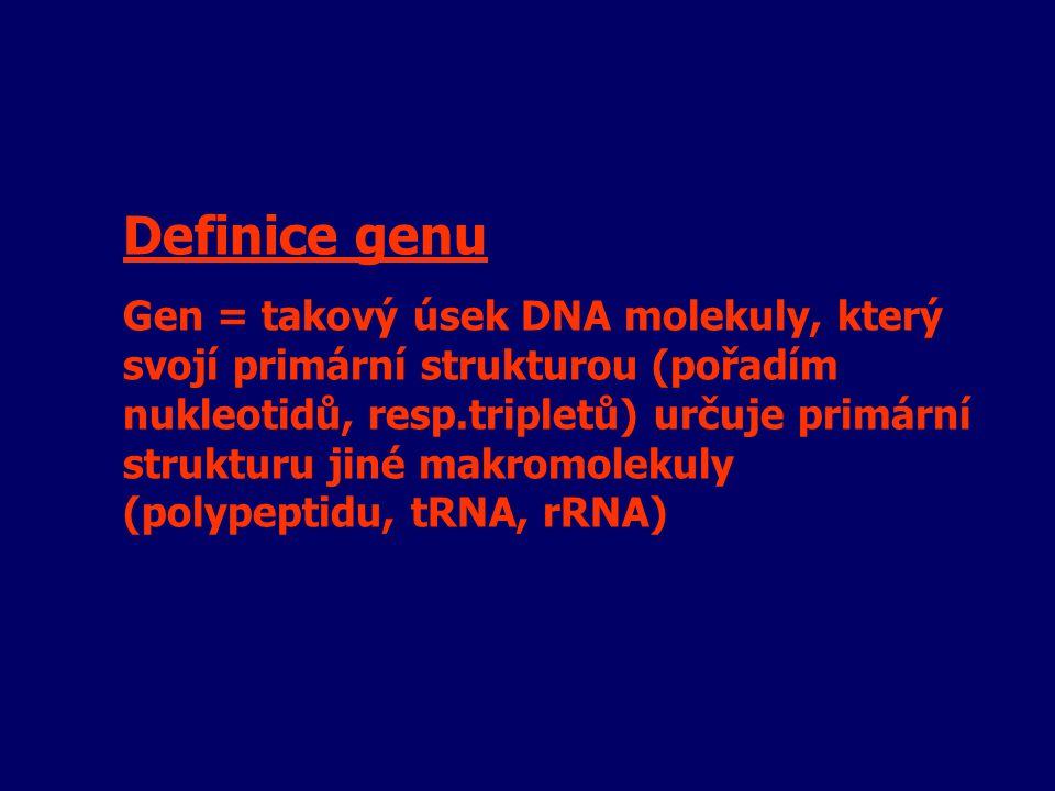 Definice genu Gen = takový úsek DNA molekuly, který svojí primární strukturou (pořadím nukleotidů, resp.tripletů) určuje primární strukturu jiné makro