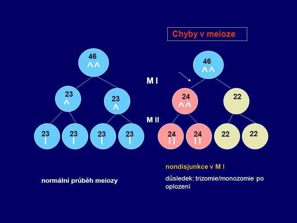 46 23 46 2422 24 22 M I M II normální průběh meiozy nondisjunkce v M I důsledek: trizomie/monozomie po oplození Chyby v meioze
