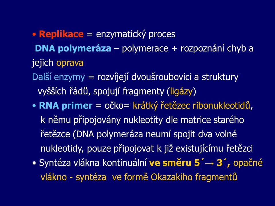 Replikace = enzymatický proces DNA polymeráza – polymerace + rozpoznání chyb a jejich oprava Další enzymy = rozvíjejí dvoušroubovici a struktury vyšší