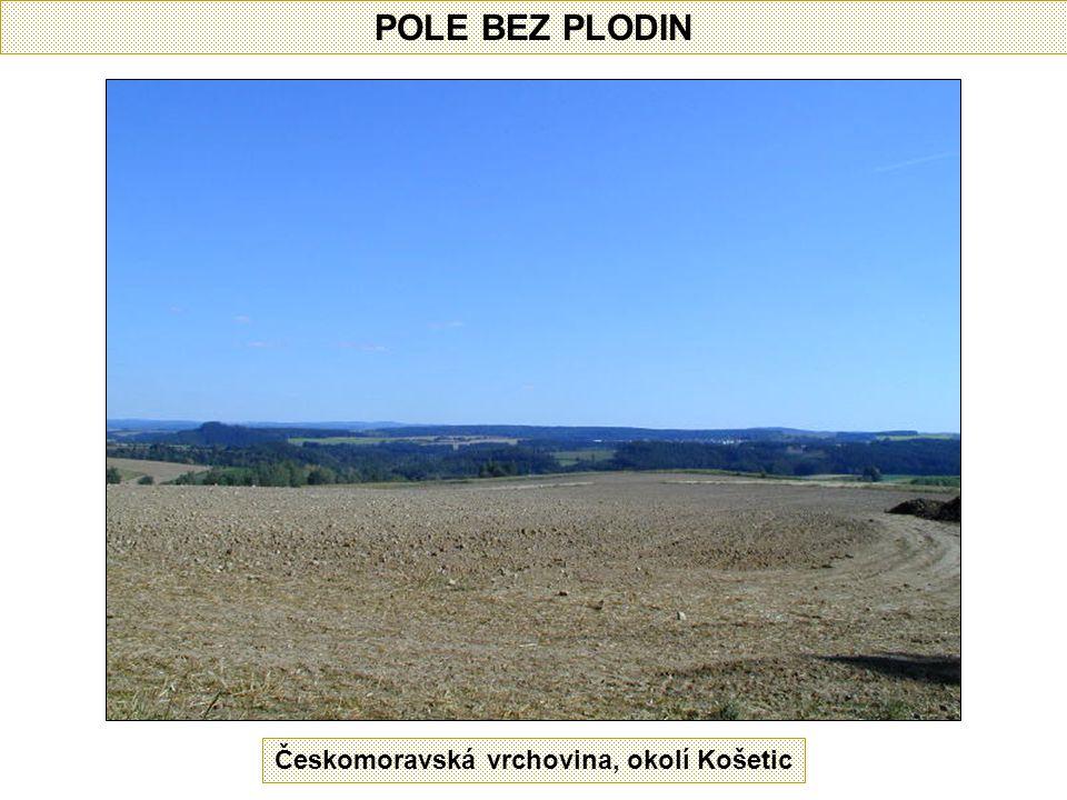 POLE BEZ PLODIN Českomoravská vrchovina, okolí Košetic