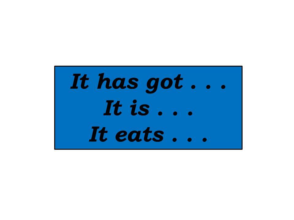 It has got... It is... It eats...