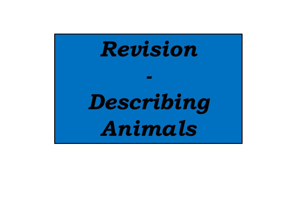 Revision - Describing Animals