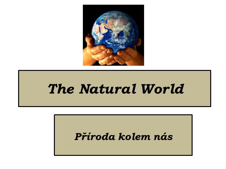 The Natural World Příroda kolem nás