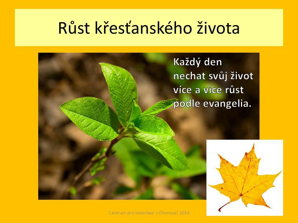 Růst křesťanského života Centrum pro katechezi v Olomouci 2014