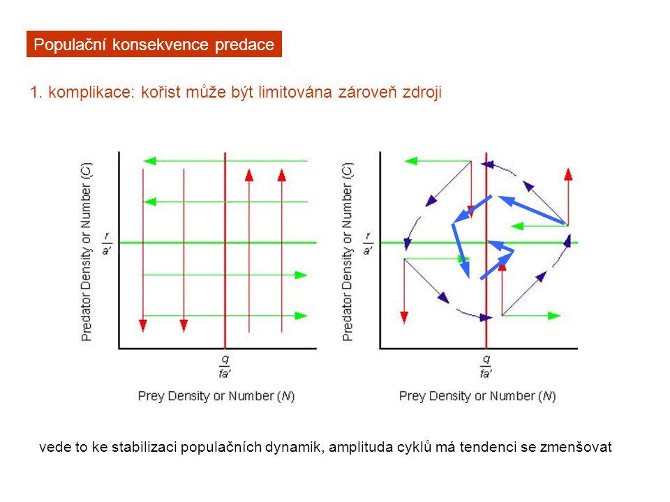 Populační konsekvence predace 1. komplikace: kořist může být limitována zároveň zdroji vede to ke stabilizaci populačních dynamik, amplituda cyklů má