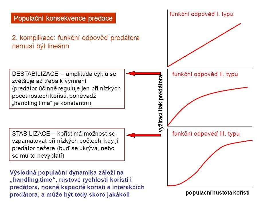 Populační konsekvence predace 2. komplikace: funkční odpověď predátora nemusí být lineární populační hustota kořisti DESTABILIZACE – amplituda cyklů s