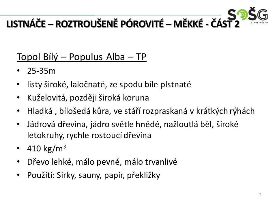 LISTNÁČE – ROZTROUŠENĚ PÓROVITÉ – MĚKKÉ - ČÁST 2 LISTNÁČE – ROZTROUŠENĚ PÓROVITÉ – MĚKKÉ - ČÁST 2 3 kyticky2.blog.cz www.biolib.cz