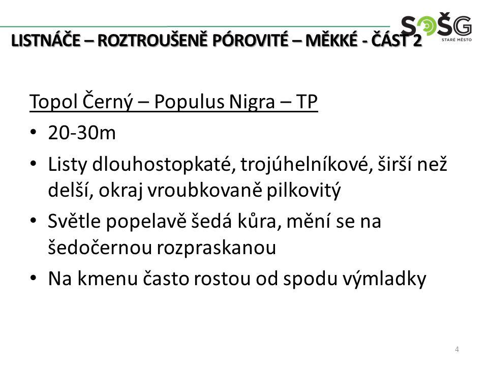 LISTNÁČE – ROZTROUŠENĚ PÓROVITÉ – MĚKKÉ - ČÁST 2 fotopriroda.blog.cz www.biolib.cz botany.cz