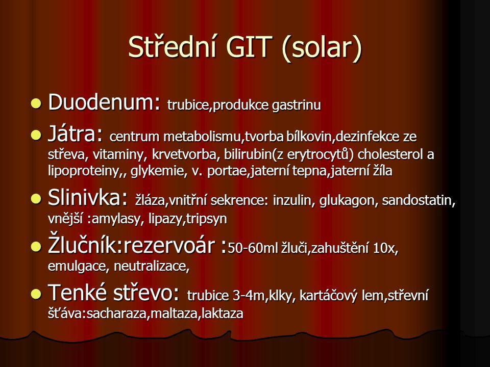 Střední GIT (solar) Duodenum: trubice,produkce gastrinu Duodenum: trubice,produkce gastrinu Játra: centrum metabolismu,tvorba bílkovin,dezinfekce ze s