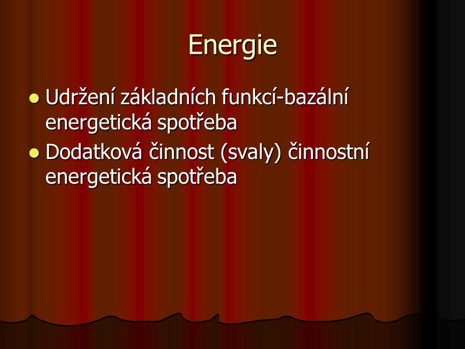 Energie Udržení základních funkcí-bazální energetická spotřeba Udržení základních funkcí-bazální energetická spotřeba Dodatková činnost (svaly) činnos