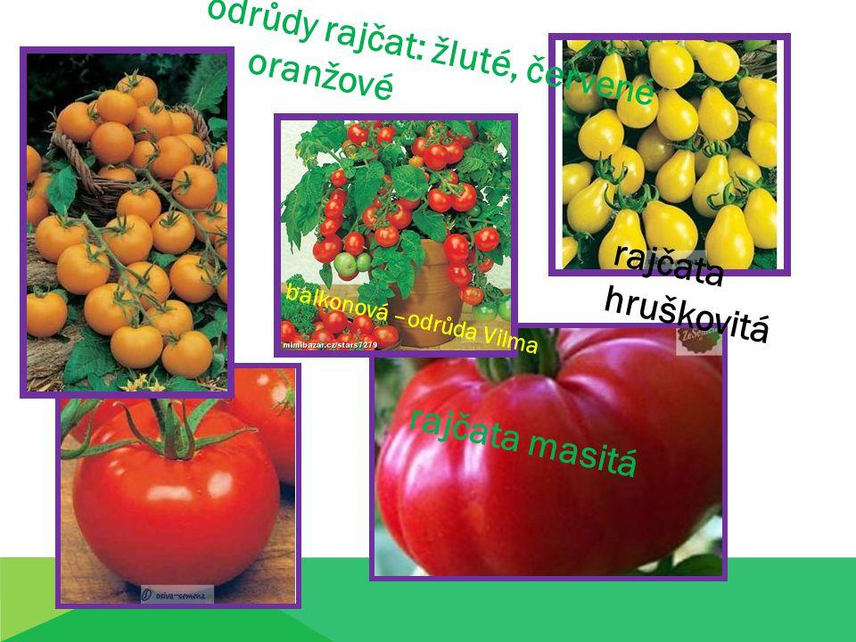 Zvláštní druhy: obr.8,9 kokteilová rajčata kokteilová rajčata papriková rajčata