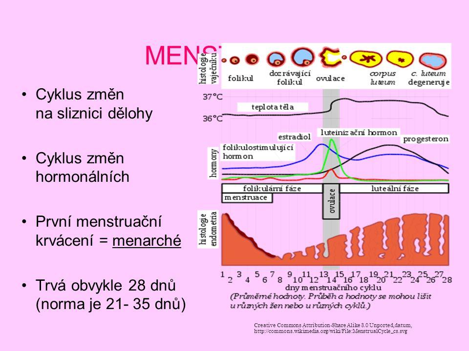 MENSTRUACE Cyklus změn na sliznici dělohy Cyklus změn hormonálních První menstruační krvácení = menarché Trvá obvykle 28 dnů (norma je 21- 35 dnů) Cre