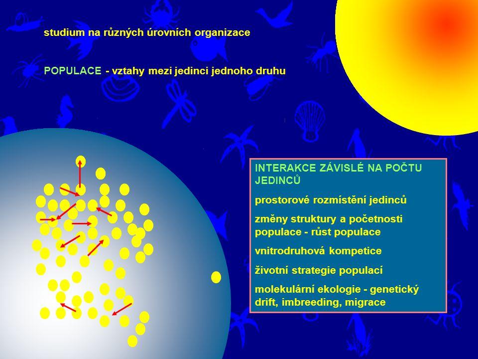 studium na různých úrovních organizace POPULACE - vztahy mezi jedinci jednoho druhu INTERAKCE ZÁVISLÉ NA POČTU JEDINCŮ prostorové rozmístění jedinců z
