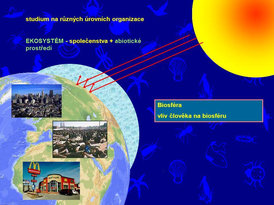 studium na různých úrovních organizace EKOSYSTÉM - společenstva + abiotické prostředí Biosféra vliv člověka na biosféru