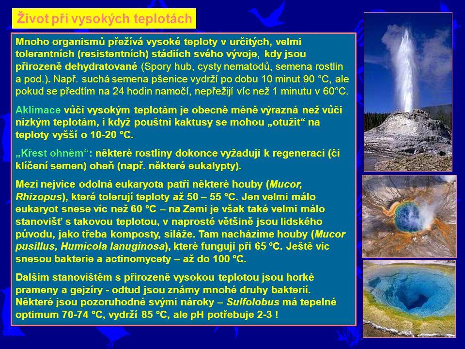 Mnoho organismů přežívá vysoké teploty v určitých, velmi tolerantních (resistentních) stádiích svého vývoje, kdy jsou přirozeně dehydratované (Spory h