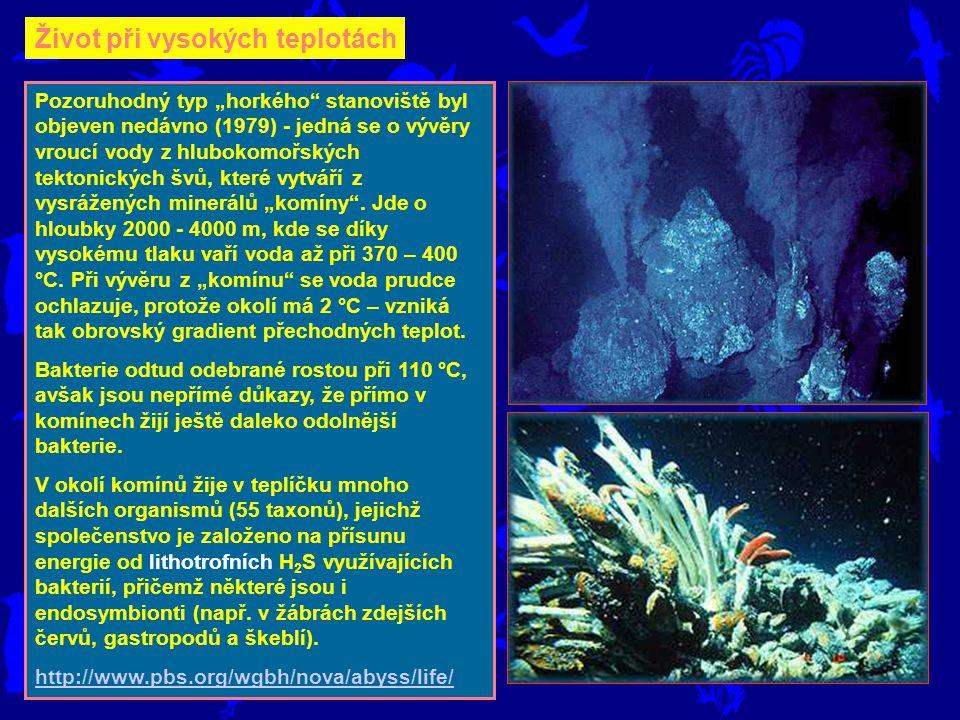 """Život při vysokých teplotách Pozoruhodný typ """"horkého stanoviště byl objeven nedávno (1979) - jedná se o vývěry vroucí vody z hlubokomořských tektonických švů, které vytváří z vysrážených minerálů """"komíny ."""