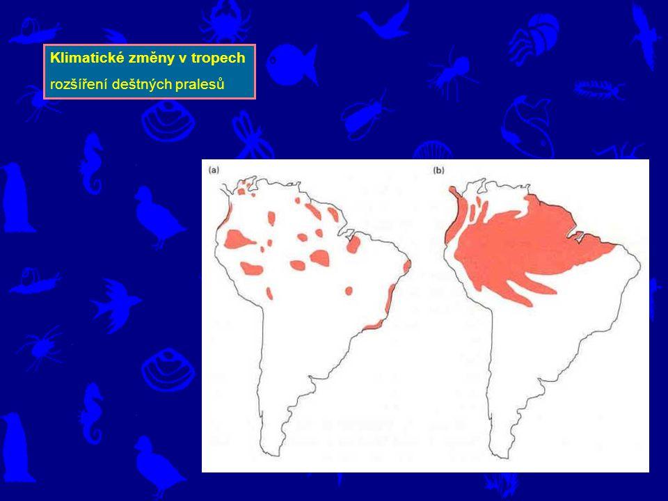 Klimatické změny v tropech rozšíření deštných pralesů