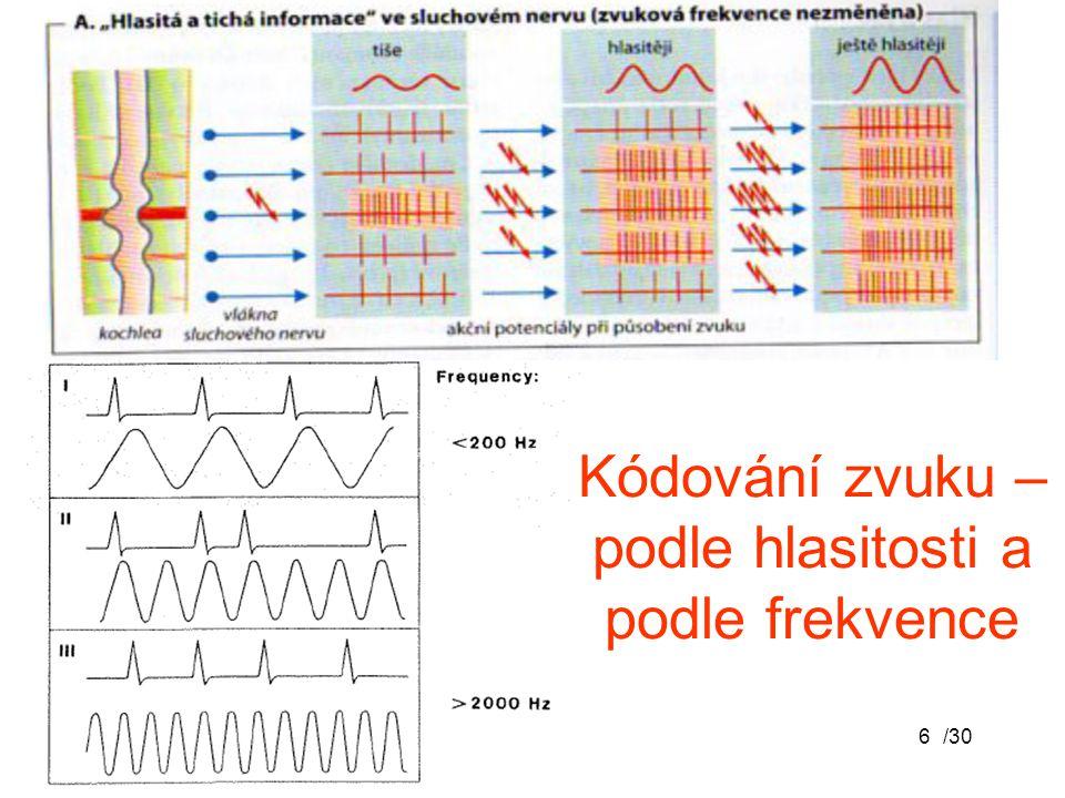 /306 Kódování zvuku – podle hlasitosti a podle frekvence