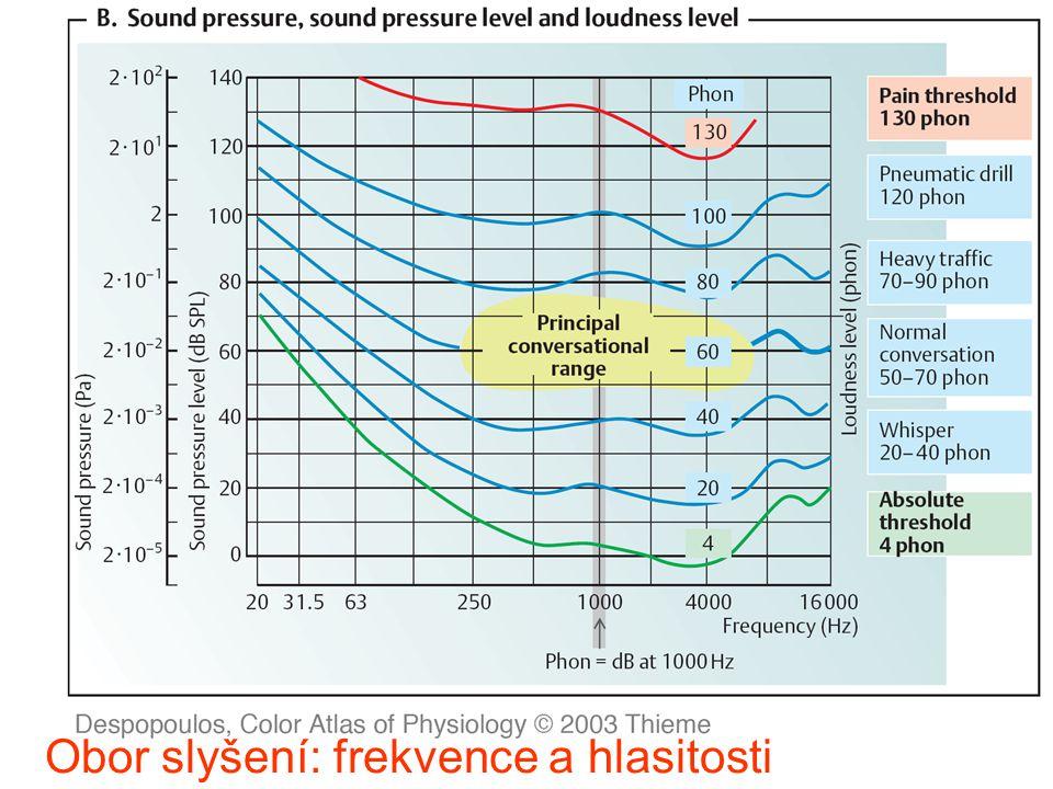 /307 Nadpis Obor slyšení: frekvence a hlasitosti