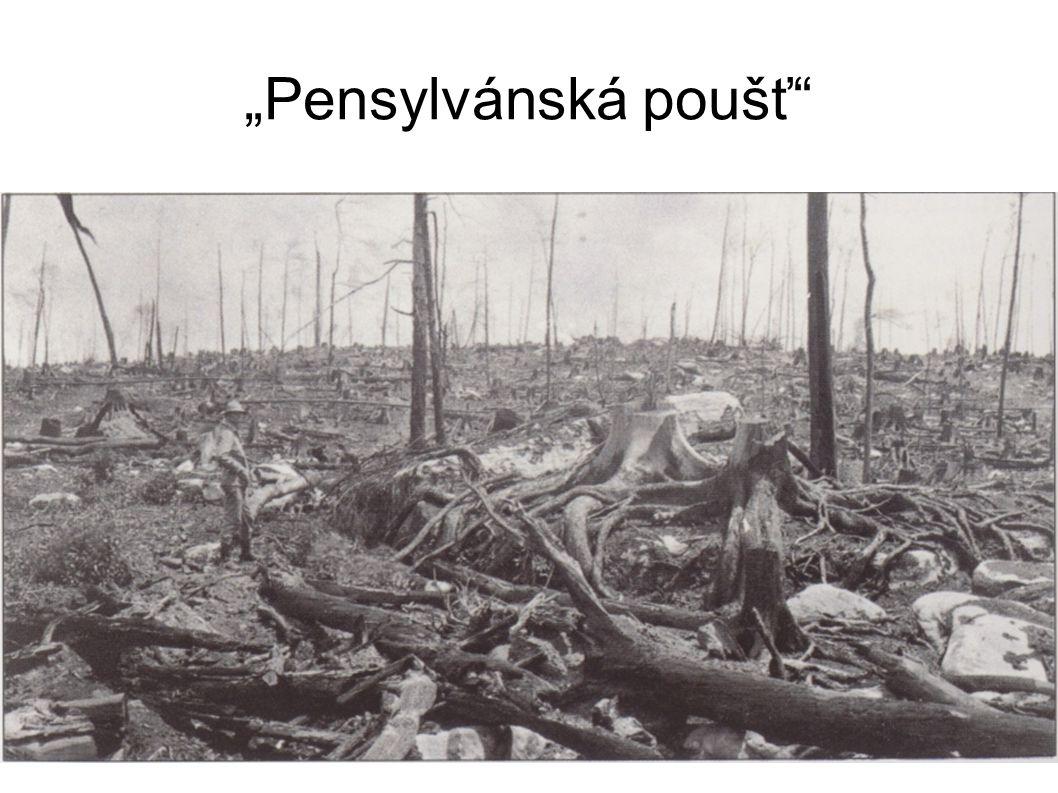 """""""Pensylvánská poušť"""""""