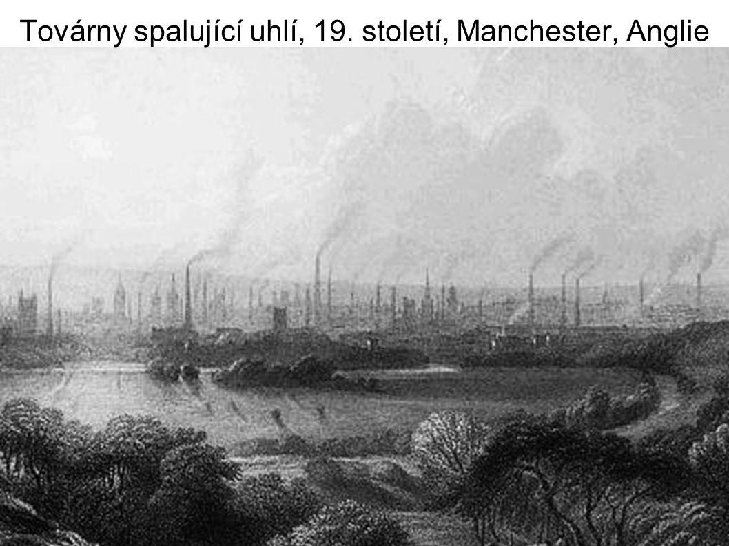 Lov velryb v 18.a 19.