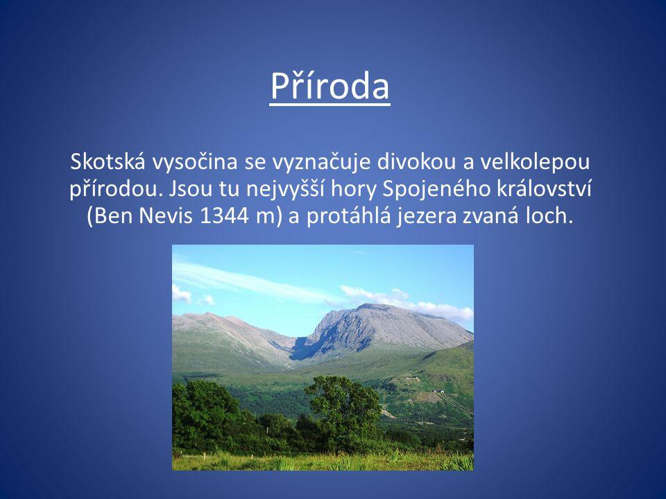 Příroda Skotská vysočina se vyznačuje divokou a velkolepou přírodou. Jsou tu nejvyšší hory Spojeného království (Ben Nevis 1344 m) a protáhlá jezera z