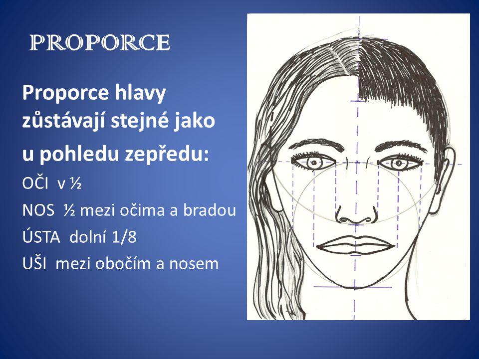 PROPORCE Proporce hlavy zůstávají stejné jako u pohledu zepředu: OČI v ½ NOS ½ mezi očima a bradou ÚSTA dolní 1/8 UŠI mezi obočím a nosem