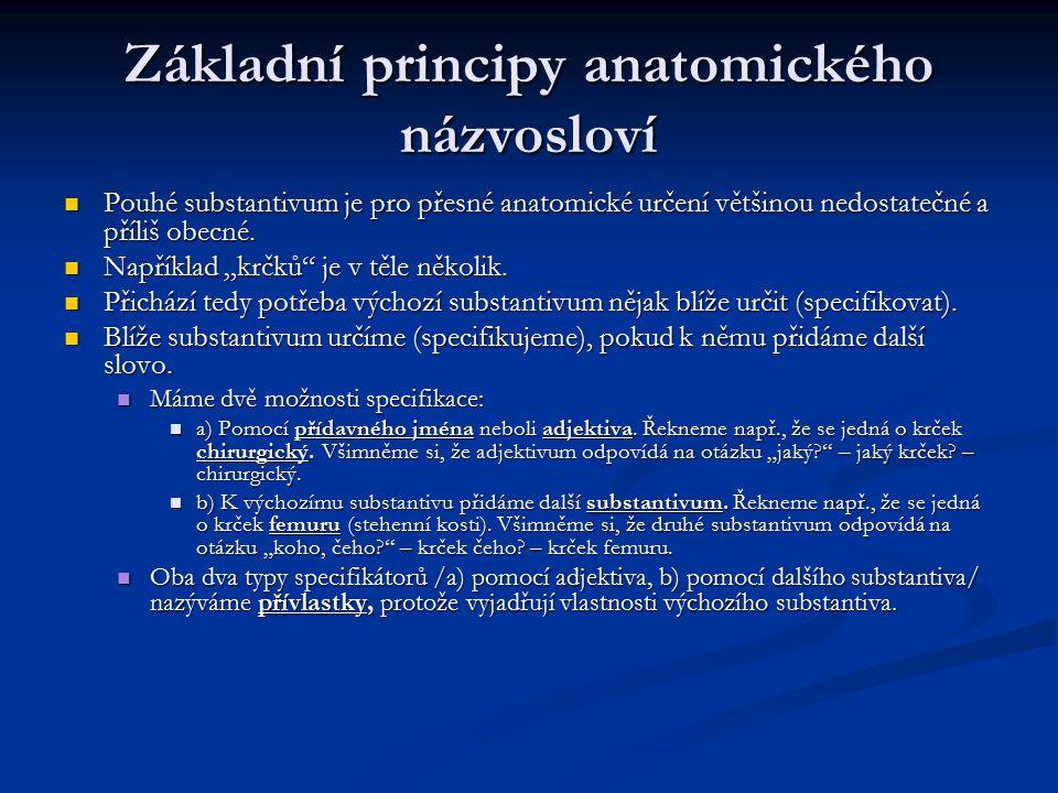 Základní principy anatomického názvosloví Pouhé substantivum je pro přesné anatomické určení většinou nedostatečné a příliš obecné. Pouhé substantivum