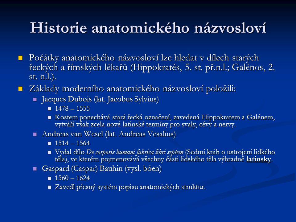Historie anatomického názvosloví Počátky anatomického názvosloví lze hledat v dílech starých řeckých a římských lékařů (Hippokratés, 5. st. př.n.l.; G