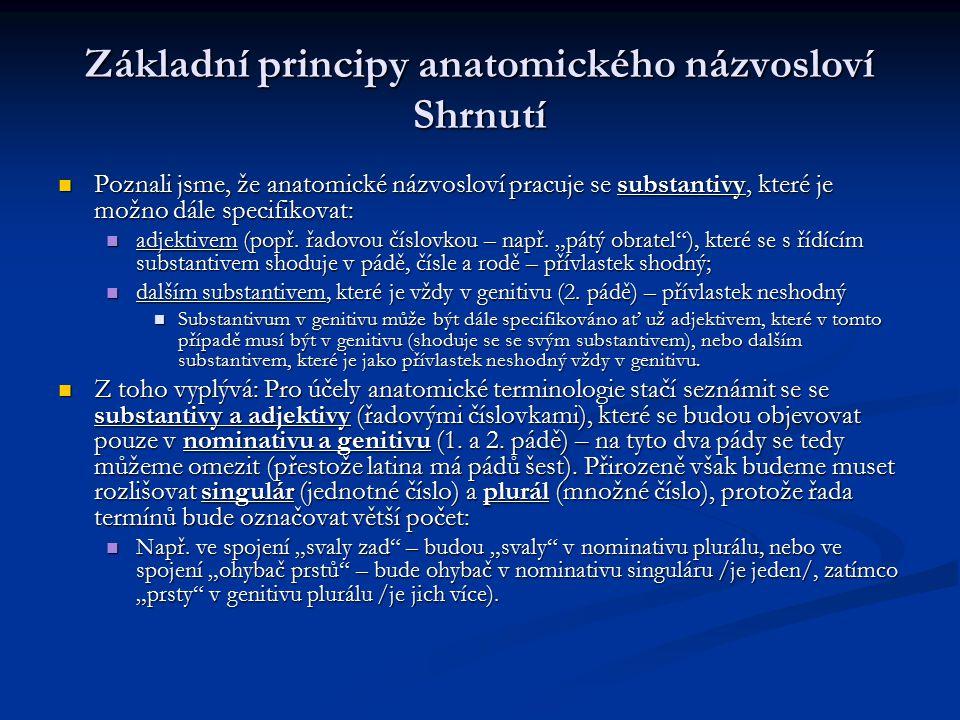Základní principy anatomického názvosloví Shrnutí Poznali jsme, že anatomické názvosloví pracuje se substantivy, které je možno dále specifikovat: Poz