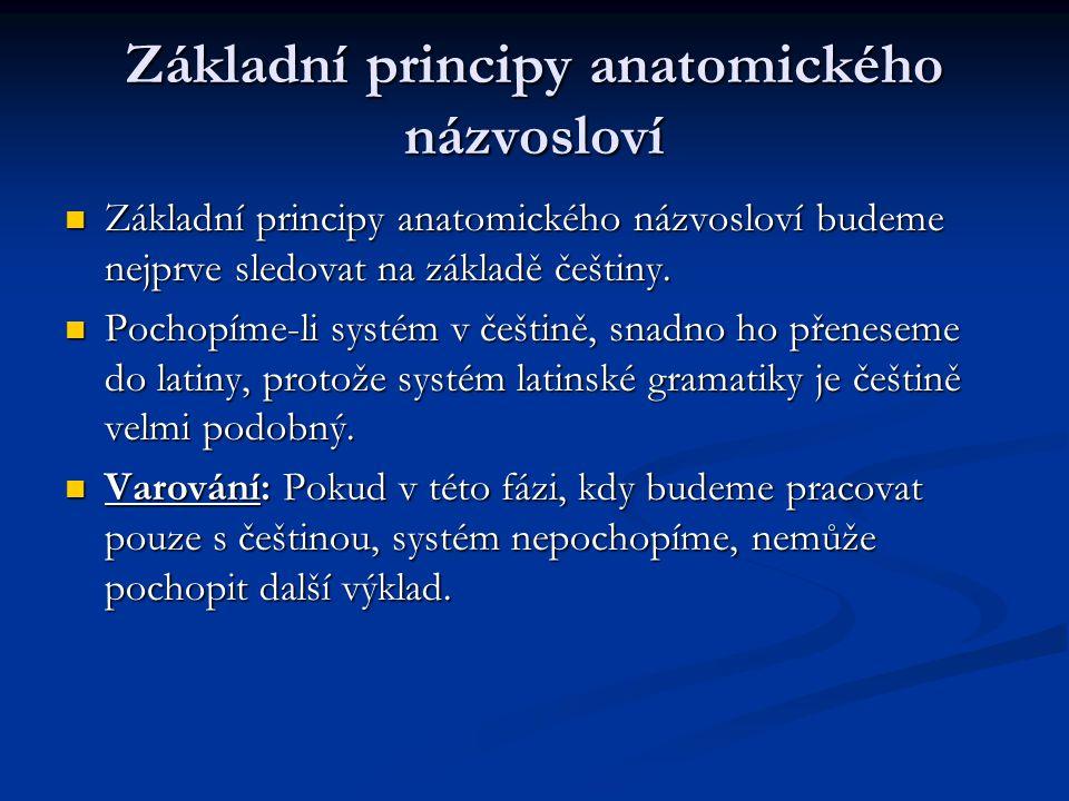 Základní principy anatomického názvosloví Základní principy anatomického názvosloví budeme nejprve sledovat na základě češtiny. Základní principy anat