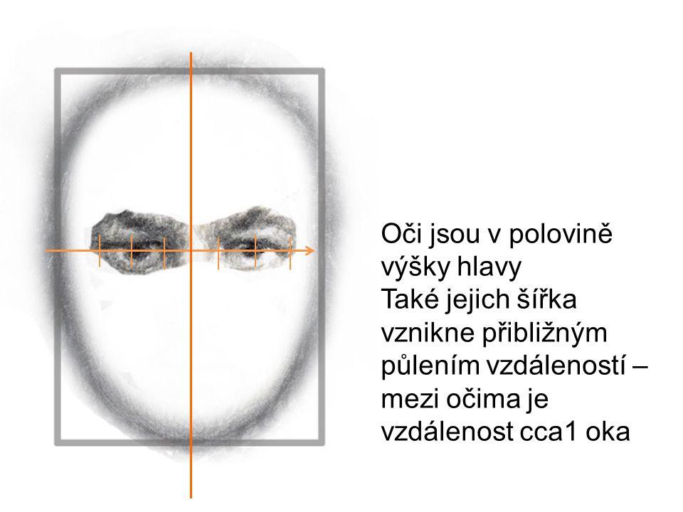Oči jsou v polovině výšky hlavy Také jejich šířka vznikne přibližným půlením vzdáleností – mezi očima je vzdálenost cca1 oka