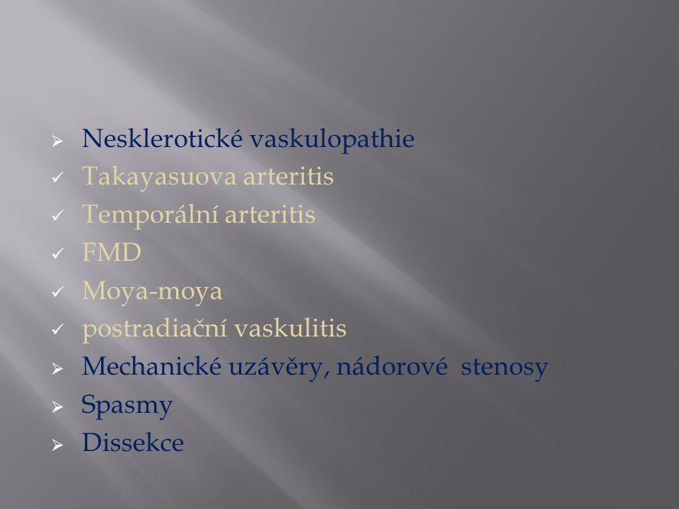  Nesklerotické vaskulopathie Takayasuova arteritis Temporální arteritis FMD Moya-moya postradiační vaskulitis  Mechanické uzávěry, nádorové stenosy  Spasmy  Dissekce