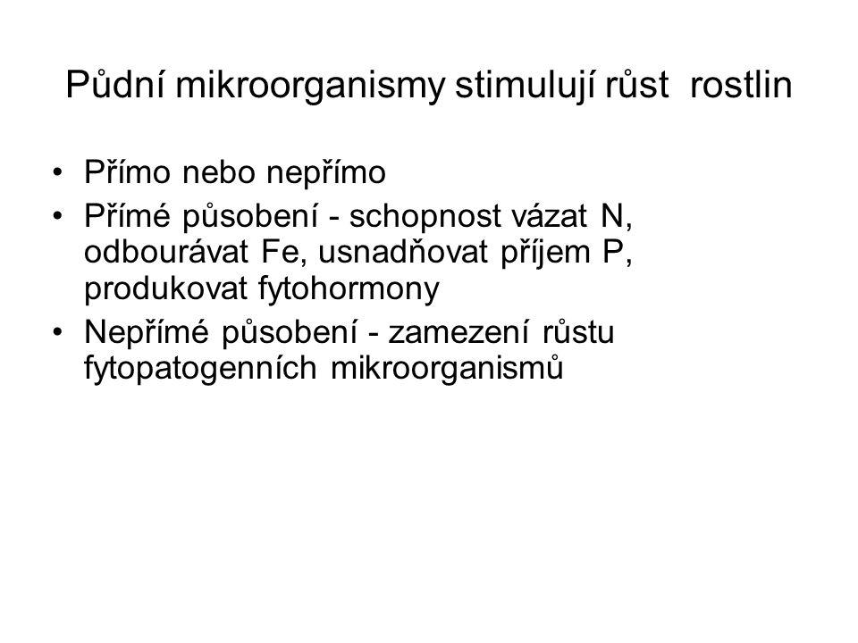 Další pozornost je věnována Ovlivnění tvorby hlízek na kořenech rostlin Tzv. nodulaci