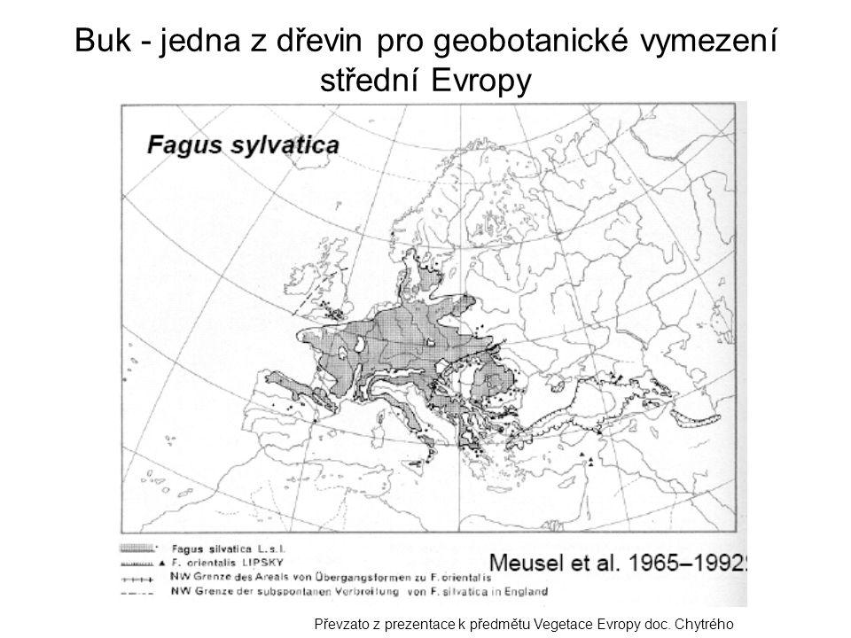 Buk - jedna z dřevin pro geobotanické vymezení střední Evropy Převzato z prezentace k předmětu Vegetace Evropy doc. Chytrého