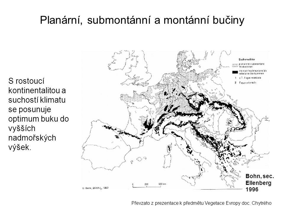 Planární, submontánní a montánní bučiny Bohn, sec. Ellenberg 1996 Převzato z prezentace k předmětu Vegetace Evropy doc. Chytrého S rostoucí kontinenta