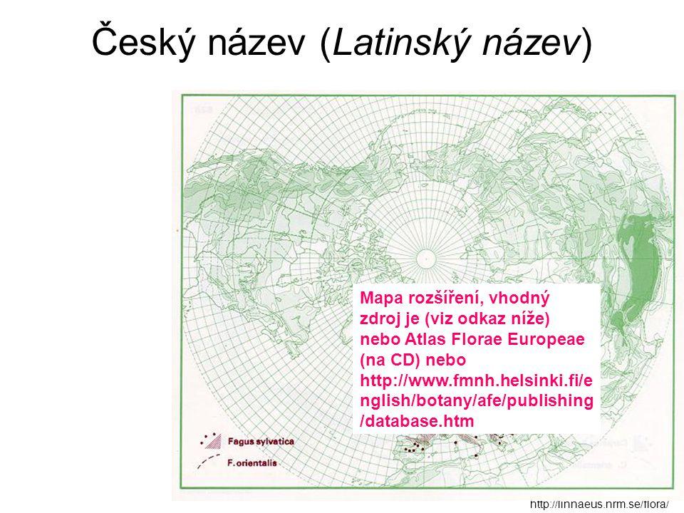 Český název (Latinský název) http://linnaeus.nrm.se/flora/ Mapa rozšíření, vhodný zdroj je (viz odkaz níže) nebo Atlas Florae Europeae (na CD) nebo ht