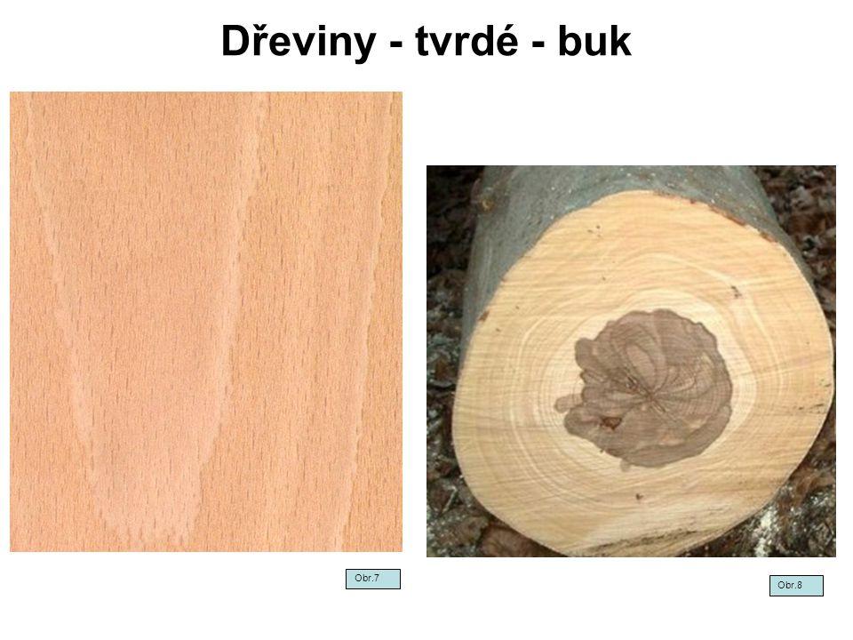 Dřeviny - tvrdé - buk Obr.7 Obr.8