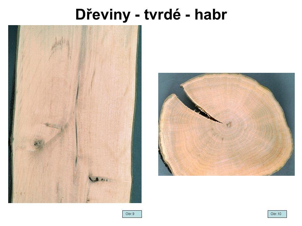 Dřeviny - tvrdé - habr Obr.9Obr.10