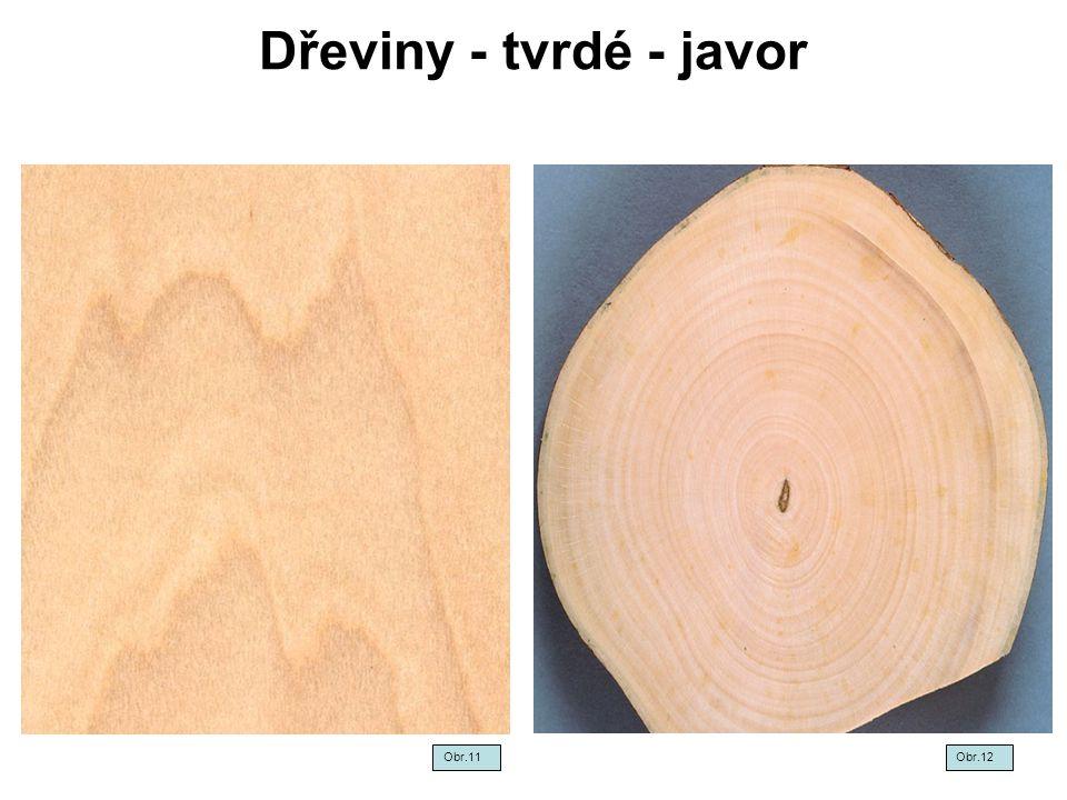 Dřeviny - tvrdé - javor Obr.11Obr.12